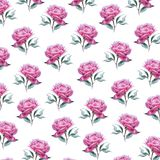 Pink peony flower pattern royalty free illustration