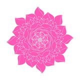 Pink peony Flower vector concept logo ethnic plant. Decor spring or summer floral design element. Abstract calligraphic wedding royalty free illustration