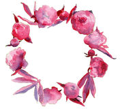 Pink peony flowers garland. Lovely pink peony flowers garland stock illustration