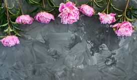 Pink peony flowers on grey grunge background with copy space. Pink peony flowers on grey grunge background. Floral texture stock image