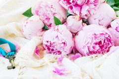 Pink peony flowers with key Stock Photos