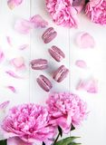 Pink peony flowers with macarons. On a white wooden table Stock Photography