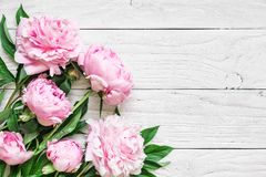 Pink peony flowers on white wooden table. womans day or wedding background with copy space. flat lay royalty free stock image