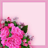 Pink peony, hawthorn and lilac flowers bouquet in a corner Royalty Free Stock Image
