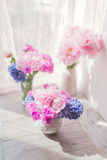 Pink peony and hyacinth Stock Images