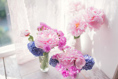 Pink peony and hyacinth Royalty Free Stock Images