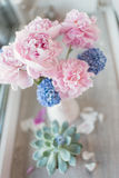 Pink peony and hyacinth. On the window in a white vase bouquet of pink peonies and blue and flower petals Stock Image
