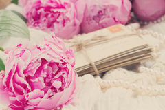 Pink a  peony on lace Stock Images