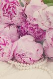 Pink a  peony on lace Royalty Free Stock Photos