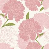 Pink peony rose flowers elegant beautiful vector floral spring summer seamless pattern texture background. Detailed line drawing. Vector design illustration stock illustration