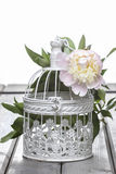 Pink peony in wicker basket on rustic wooden table. Stock Image