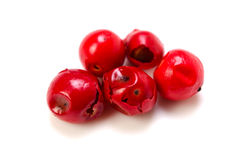 Pink pepper Royalty Free Stock Photo