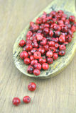 Pink pepper berries Stock Photography