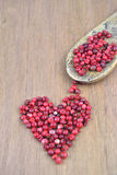 Pink pepper berries Royalty Free Stock Image