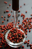 Pink pepper in a glass spoon Royalty Free Stock Photo