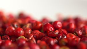 Pink pepper peas. Close up. The movement in a shot. Close up stock footage