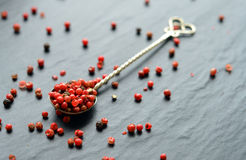 Pink pepper on a spoon Royalty Free Stock Image