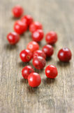 Pink peppercorn close-up Royalty Free Stock Image
