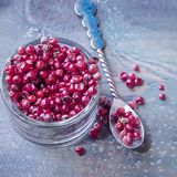 Pink Peppercorn. Isolated. royalty free stock photos