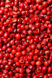 Pink peppercorns background Stock Photography