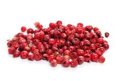 Pink peppercorns Stock Images