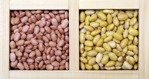 Pink and perruano bean Stock Photos