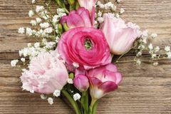Pink persian buttercup flower, freesia flower Royalty Free Stock Photography