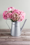 Pink persian buttercup flowers. Curly peony ranunculus in Metallic gray vintage watering can, copy space. Royalty Free Stock Photography