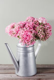 Pink persian buttercup flowers. Curly peony ranunculus in Metallic gray vintage watering can, copy space. Stock Photo