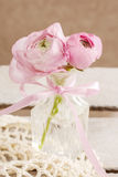Pink persian buttercup flowers (ranunculus) in crystal vase Stock Photography