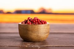 Pink peruvian pepper with autumn field behind. Lot of whole peruvian pink pepper in a wooden bowl with autumn field in background stock photo