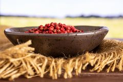 Pink peruvian pepper with field behind. Lot of whole peruvian pink pepper on grey ceramic plate on jute cloth with green wheat field royalty free stock image