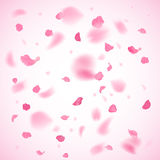 Pink petals background. In vector stock illustration