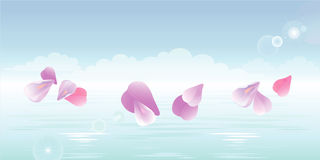 Pink petals falling in water. Sakura petals. Vector Stock Photography
