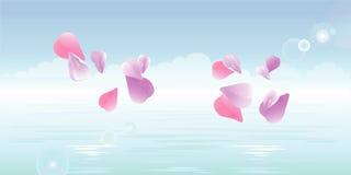 Pink petals falling in water. Sakura petals. Vector Stock Images