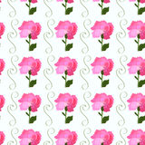 Pink petals of peony flowers on a white background. Seamless wallpaper with pink petals of peony flowers on a white background Stock Image