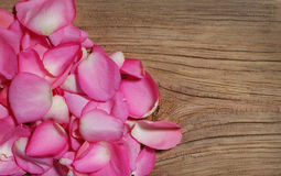 Pink Petals of Roses on Wooden Background Royalty Free Stock Image