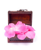 Pink petals in the treasure chest Royalty Free Stock Photography