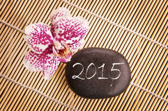 2015, pink phalaenopsis orchid and pebble Stock Image