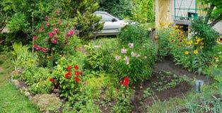 Pink phloxes and roses, geranium, calendula, Royalty Free Stock Photo