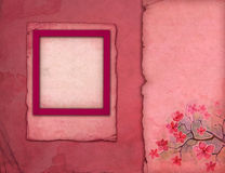 Pink photo frames Stock Photo