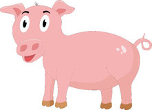 The pink pig Stock Image