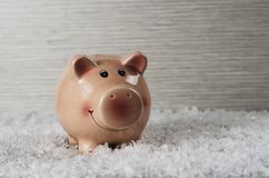 Pink pig on the background of snow 5 royalty free stock photos