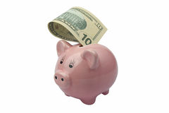 Pig bank with ten dollars banknote Stock Photo