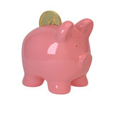Pink pig and coins Royalty Free Stock Image