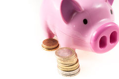Pink pig with coins Stock Photos