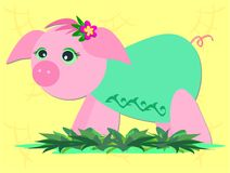 Pink Pig with Green Shirt Royalty Free Stock Images