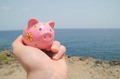 Pink pig Royalty Free Stock Photo