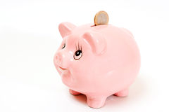 Pink pig money box isolated Stock Image