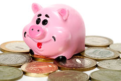 Pink pig moneybox and money. Over white Stock Photography